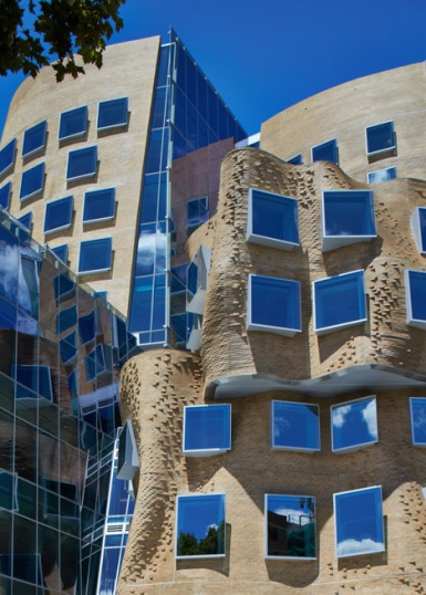 hayinstyle-uts-sydney-frank-gehry-11