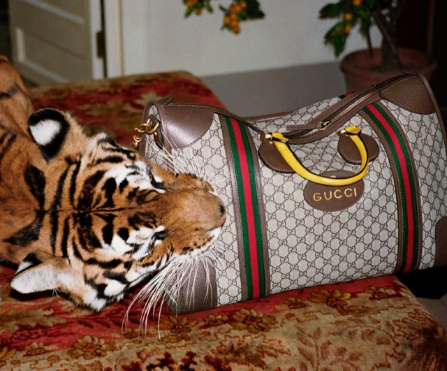hayinstyle-glen-luchford-gucci-ss-2017-ad-campaign-7