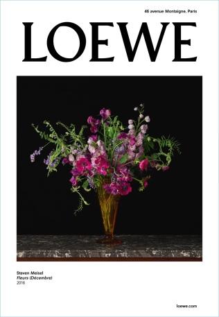 hayinstyle-max-overshine-steven-meisel-loewe-fall-2017-campaign-3