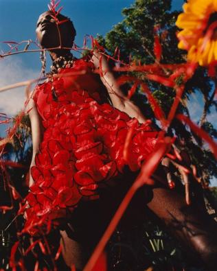 hayinstyle-shanelle-nyasiase-by-jamie-hawkesworth-for-alexander-mcqueen-spring-summer-2018-campaign-2
